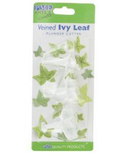 PME veined ivy leaf