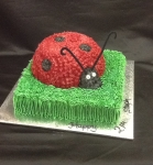 Birthday-Lady-beetle.jpg